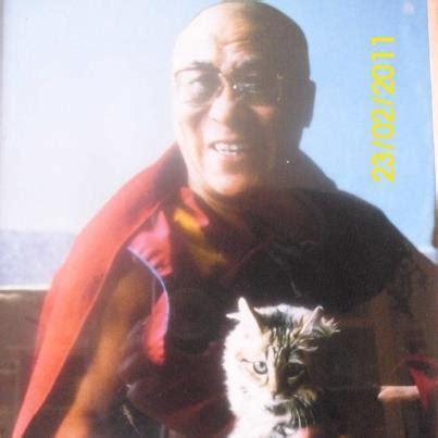1401943276 the dalai lama s cat and the dalai lamas cat basketry chronology of the early