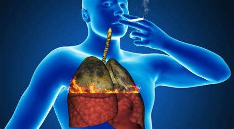 Detox From Second Smoke by Smokers Or Past Smokers Six Ways To Cleanse And