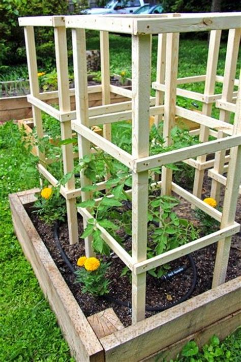 project wooden tomato cages pinteres