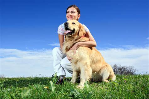 friendliest dogs environmentally friendly dogs
