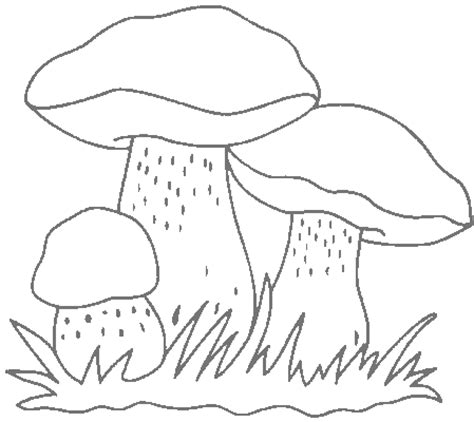 magic mushroom coloring pages coloring pages
