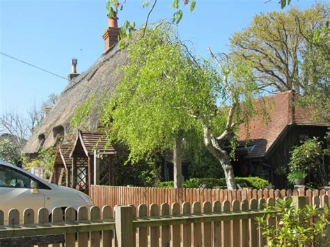 thatched cottage tea room brockenhurst picture of