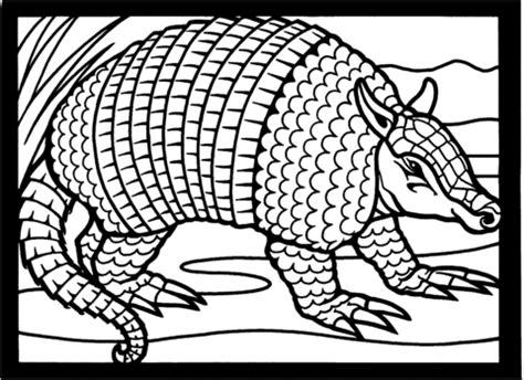 armadillo lizard coloring page ausmalbild texas neunbinden g 252 rteltier ausmalbilder