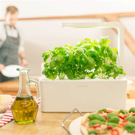 smart herb garden provides fresh herbs at home smart herb garden click grow