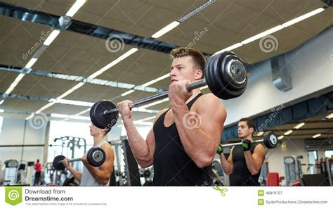 Barbel Sport of flexing muscles with barbell in stock photo image 46819707