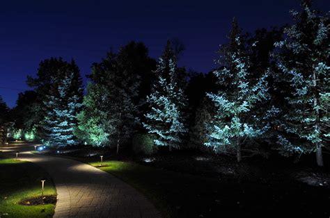 tree lighting outdoor lighting in chicago il outdoor