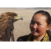 Cognitif Archives  Eco Voyage En Mongolie