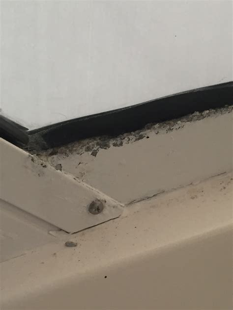boat windshield frame repair aluminum windshield frame rot the hull truth boating