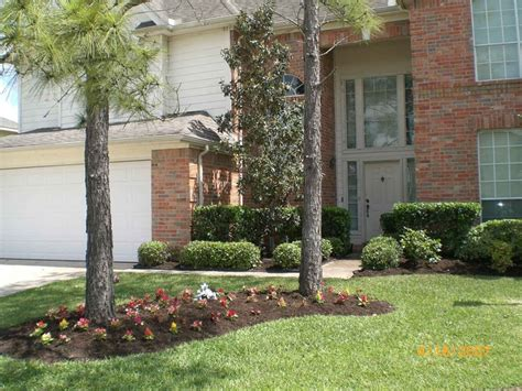 Landscaping Around Trees Mansfield House Pinterest Landscape Around Trees