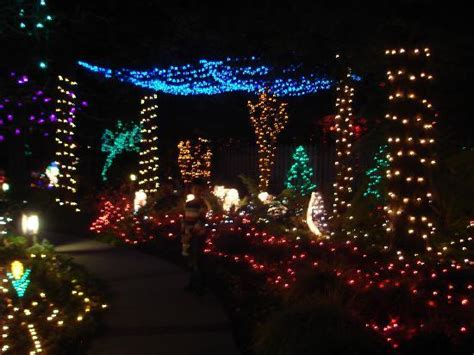 christmas lights picture of cambria pines lodge cambria
