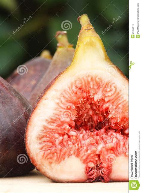 vaguna photos fresh fig closeup royalty free stock photo image 25523015