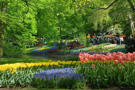 Netherlands Flower Garden Colorful Keukenhof Gardens World For Travel