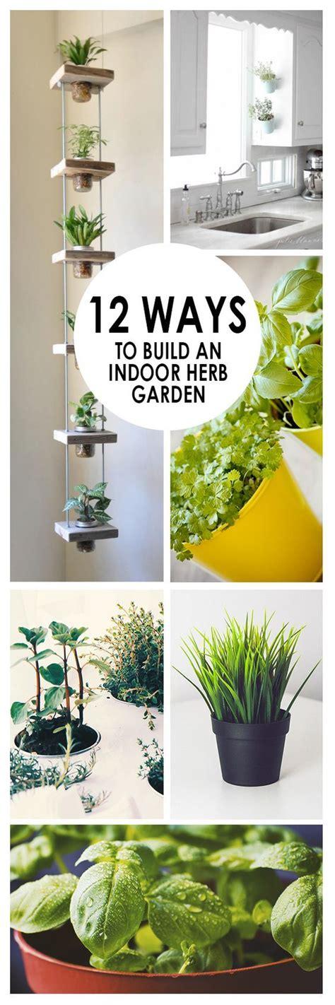 ways  build  indoor herb garden gardening viral