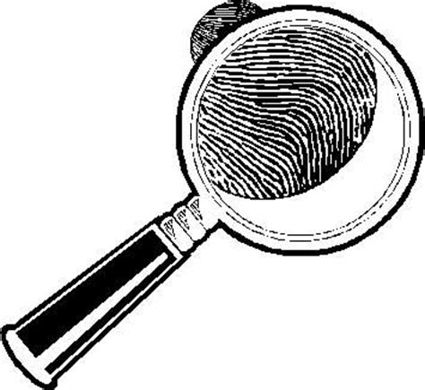 Criminal Record Check York Region Background Checks Search Records Limited Background Check For