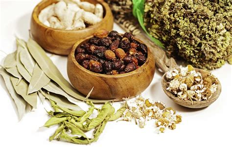traditional medicine opinions on traditional medicine