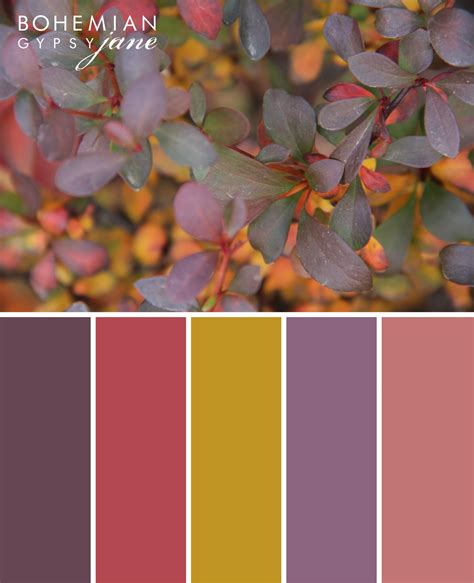 bohemian color scheme bohemian gypsy jane color love fall color inspiration