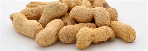 alimenti con vitamina b3 vitamina b3 combatte il colesterolo cattivo e aiuta la