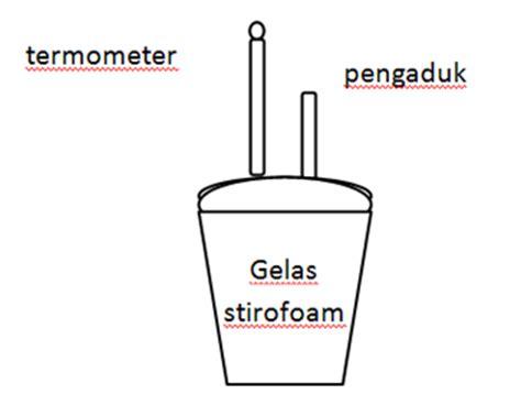 Termometer Untuk Praktikum praktikum termokimia kalorimeter sederhana awaliharimu
