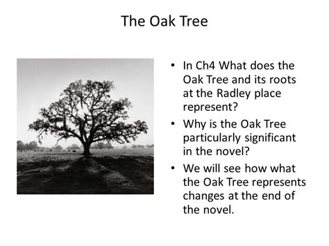 what does a tree represent to kill a mockingbird symbolism ppt video online download