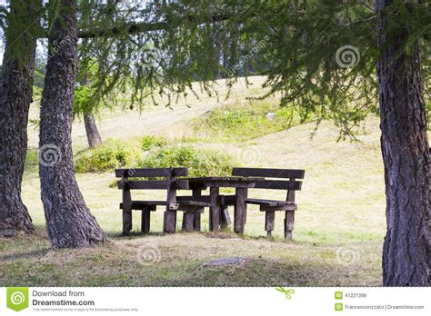 bench under tree wooden benches and table under trees stock photo image