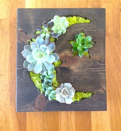 friday find adorable vertical succulent gardens