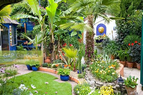 gap gardens small moroccan style tropical garden with trachycarpus fortunei and agave in mixed