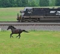 rail norfolk southern