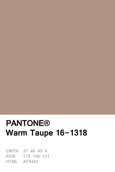 Farbpalette Taupe by Die Besten 25 Farbe Taupe Ideen Auf Taupe