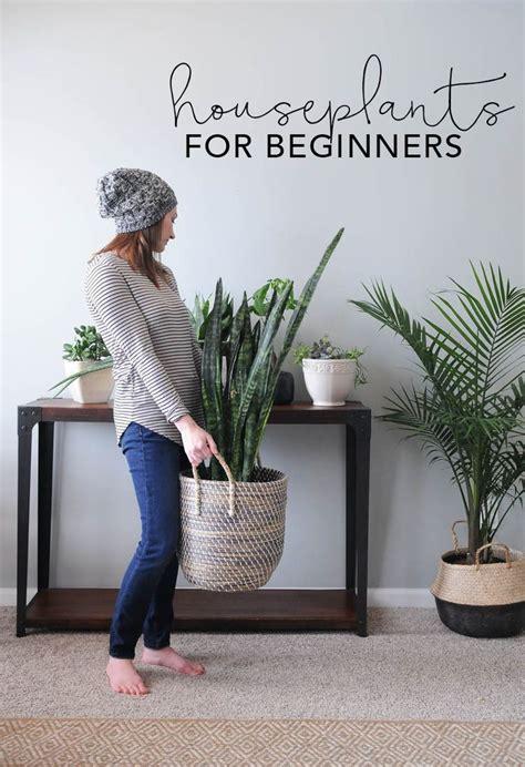 ideas  indoor plant decor  pinterest