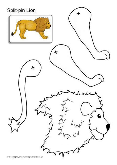 printable animal body parts 100 worksheet body parts of animals categories