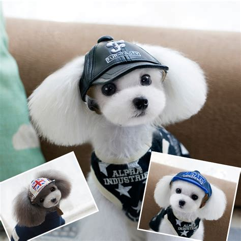 puppy baseball hat lovely pet cap baseball hat for pet puppy teddy cowboy costume hat pet