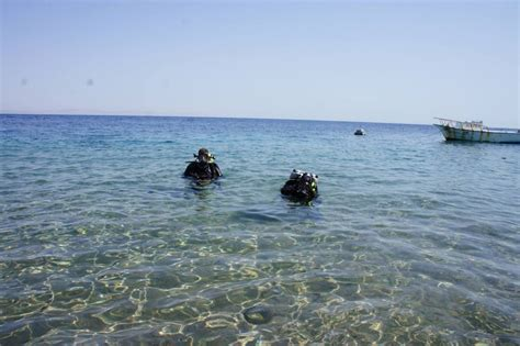 dive dahab diving dahab scuba diver