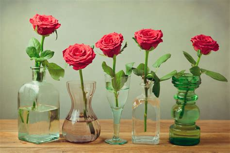 diy flower food to keep your flowers fresh hymns and verses vodka aspirin or 7up what keeps flowers fresh