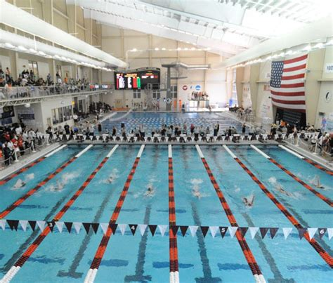 50 Square Meter by Swimming Amp Diving Facilities Christiansburg Aquatic Center