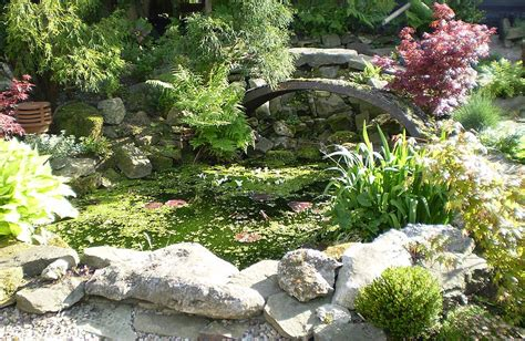 rock home gardens stunning rock garden design ideas corner