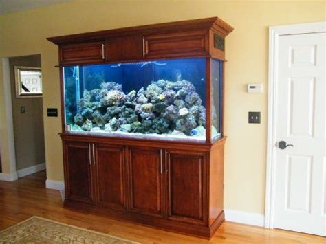 corner fish tank with cabinet best 25 fish tank cabinets ideas on cheap