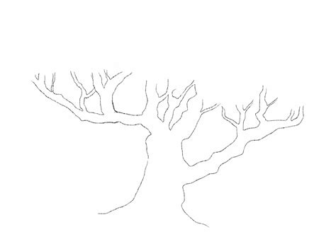 tree trunk with branches template image collections