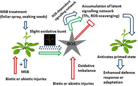 frontiers priming crops against biotic and abiotic