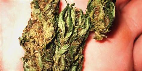 eats marijuana the big benefits of marijuana rather than it