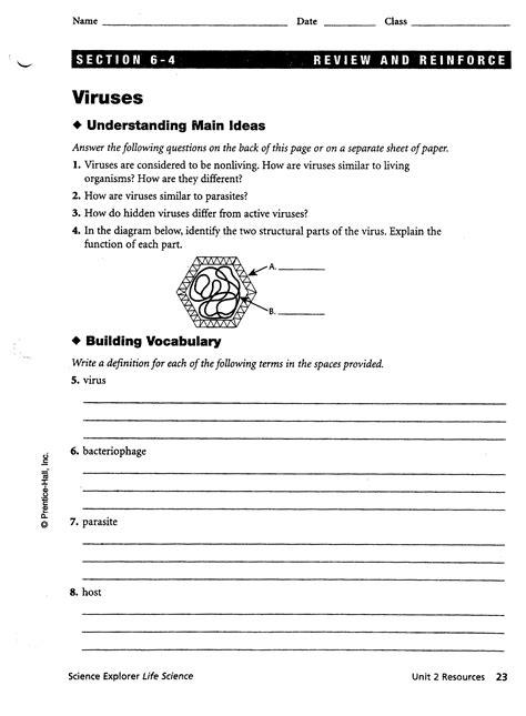 Virus And Bacteria Worksheet by Virus Worksheet Abitlikethis