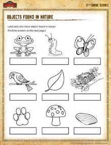 objects found in nature 2nd grade science worksheet