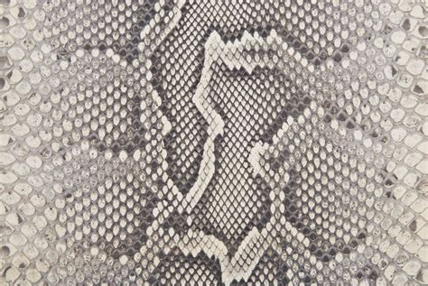design pattern with python why python skin is a perfect choice for making garments