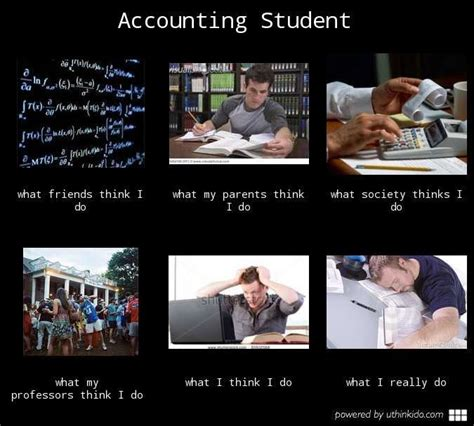 Accounting Memes - accounting student ahh sweet sweet accounting