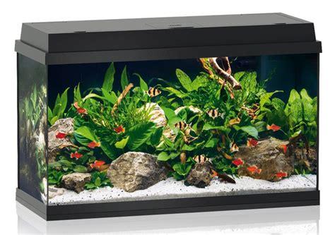 design aquarium kopen salontafel aquarium kopen ajmine com