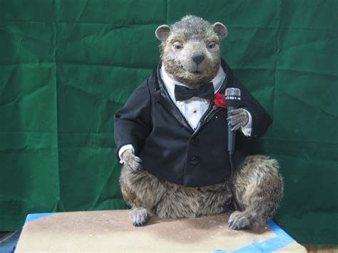 groundhog day lottery the character shop gus the groundhog celebrates his 40th