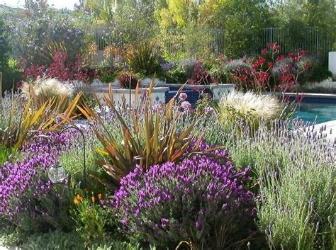 Garden Design Albuquerque Nm Photo Gallery Drought Tolerant Garden Design