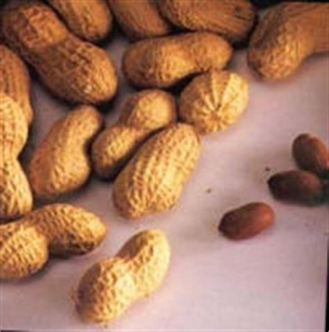 alimentazione iposodica alimentazione iposodica ipoproteica carcinomaepatico it