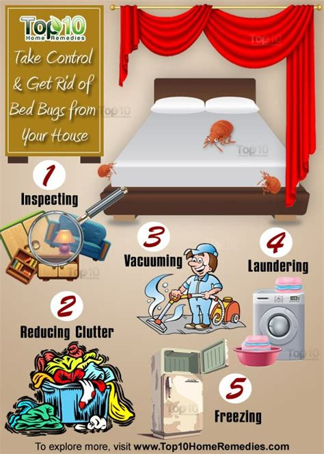 how can you get bed bugs here s how to take control get rid of bed bugs from your
