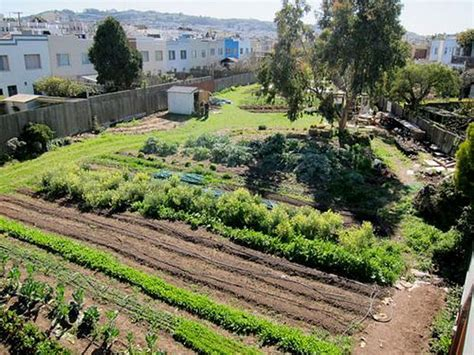 City Gardens by Proposed Could Deliver Major Boost To Agriculture In California Civil Eats