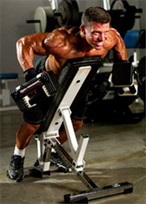 shane carwin bench press incline bench dumbbell rows benchdesignideas